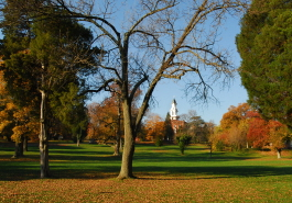 Alexandria - Seminary Yard