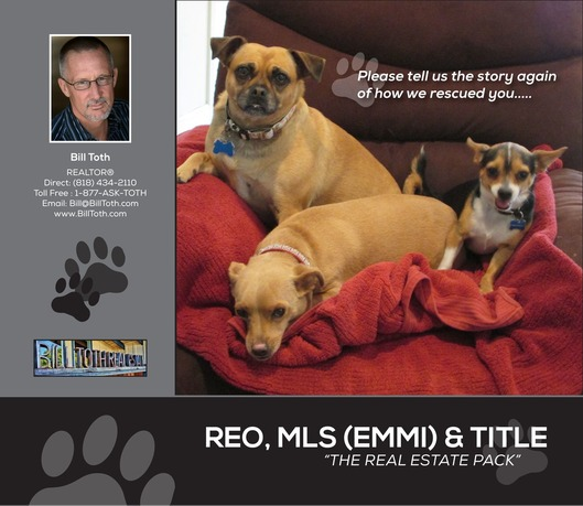 http://isvr.acceleragent.com/usr/1127253948/CustomPages/images/DOGS2.jpg