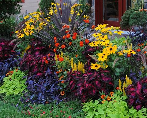http://isvr.acceleragent.com/usr/1549743260/CustomPages/images/flowers.jpg