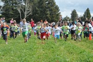 Annual Run Mountain View