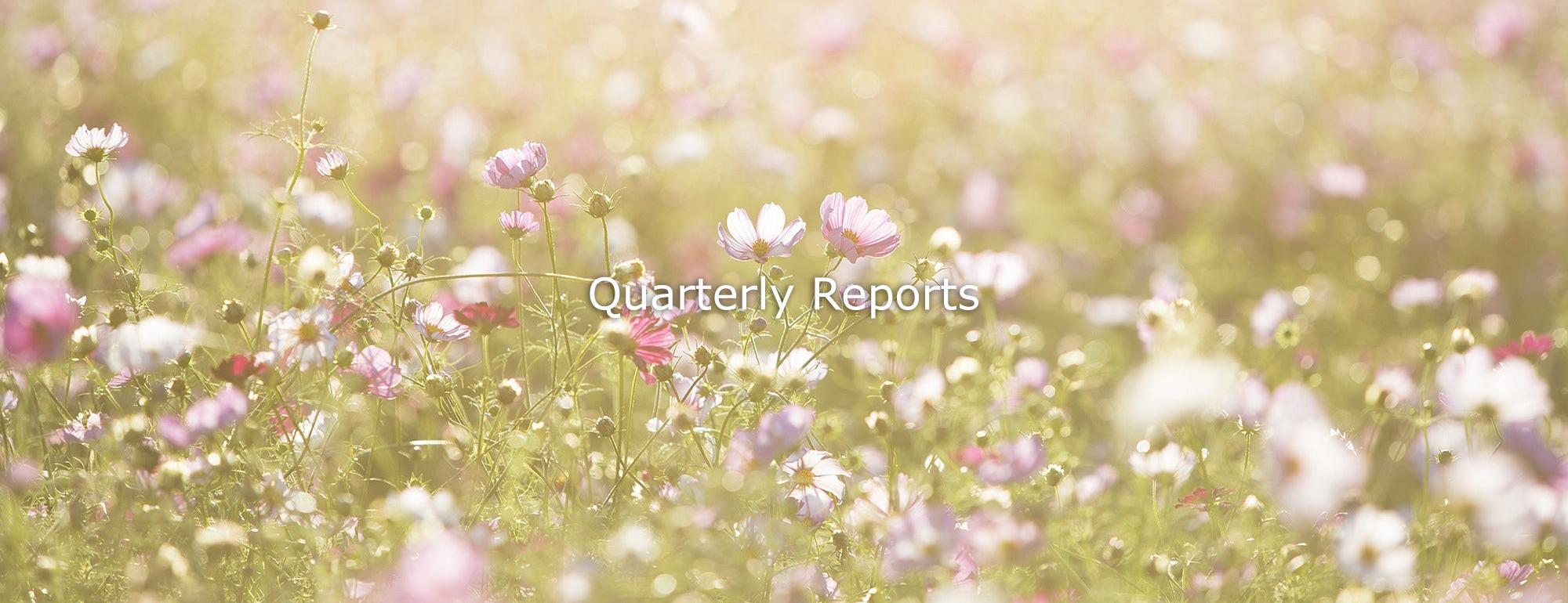 Quarterly Reports