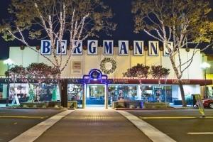 WG Bergmans