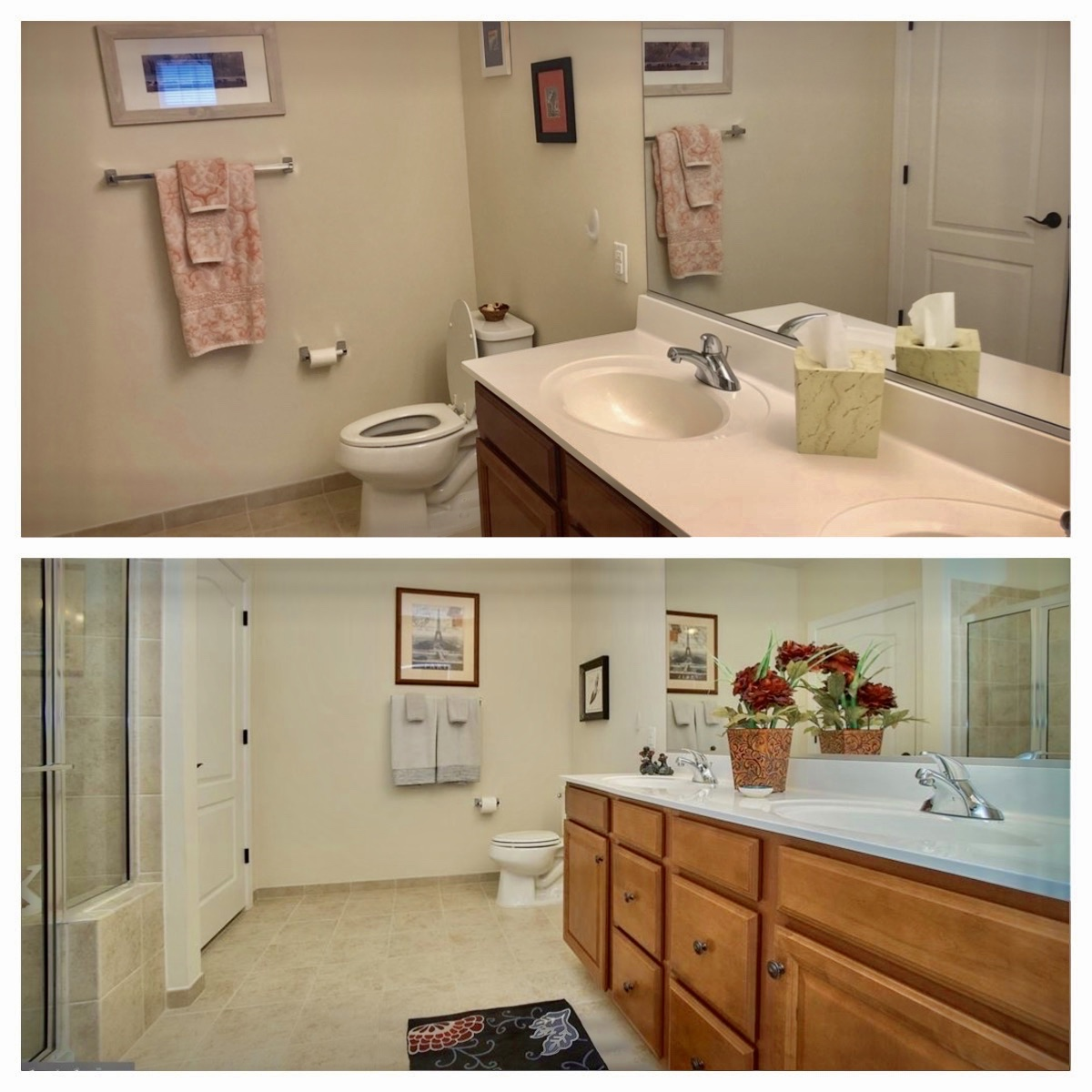 Master Bathroom Before & After