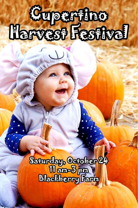 Cupertino Harvest Festival