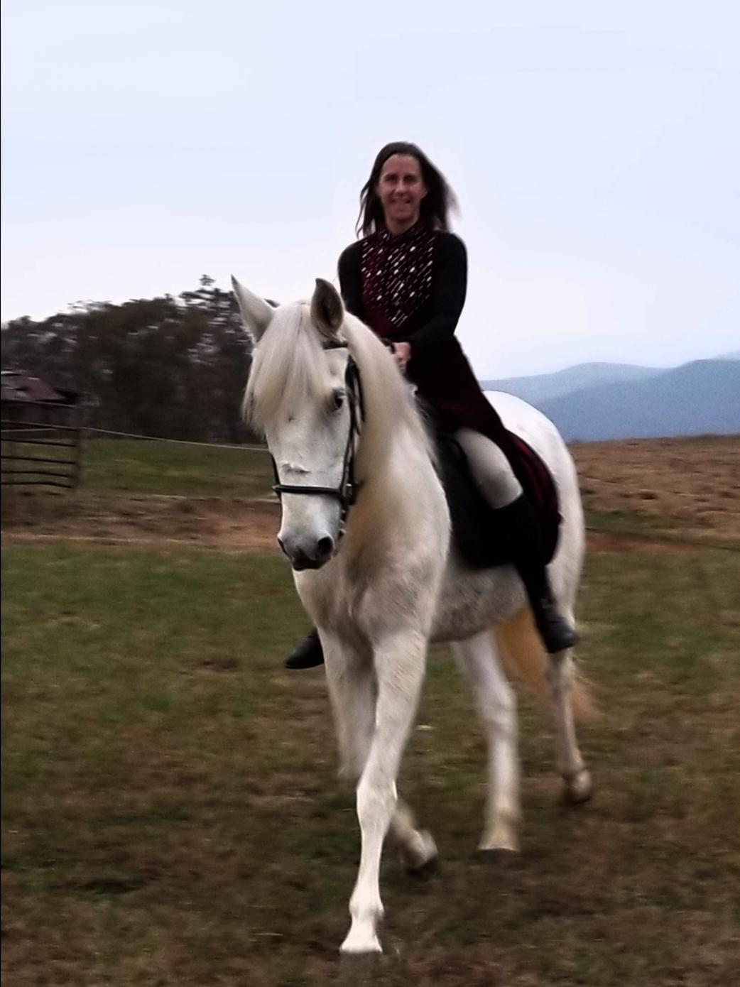 Devon Willow horse